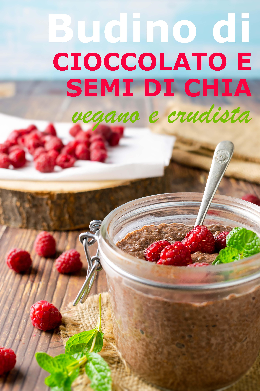 vegan raw chia chocolate pudding