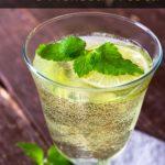 Spritz Al Lime E Melissa Fresca Con Pochissime Calorie immagine